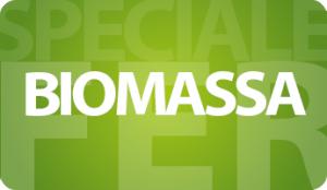 BannerFER_biomassa